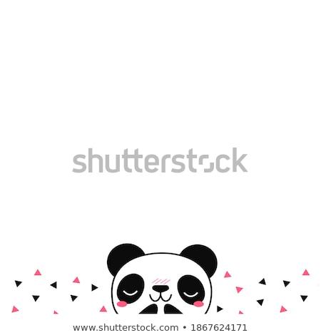 Panda bandeira ilustração escritório projeto fundo Foto stock © bluering