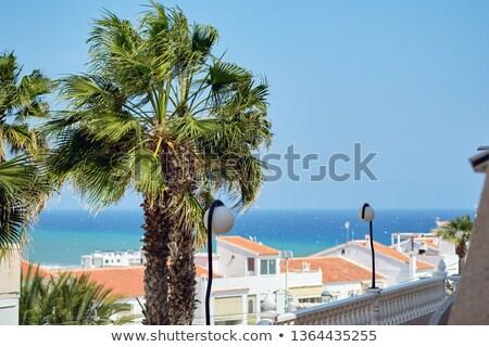 Huizen daken huis terras Spanje Stockfoto © amok