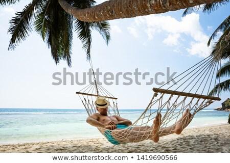 tengerpart · édenkert · pálmafa · akasztás · gyönyörű · jelenet - stock fotó © andreypopov