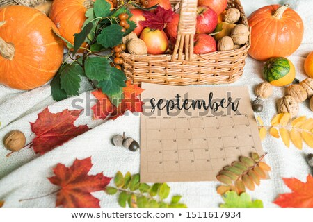 september background with ripe apples and pumpkins walnuts acorns and leaves stock photo © pressmaster
