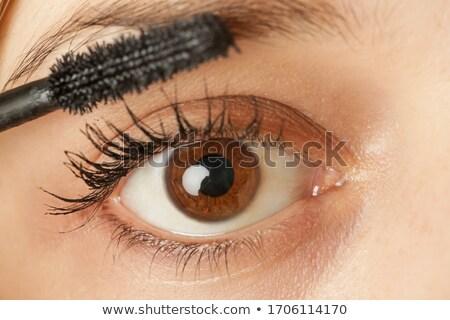 Fiatal nő barna szemek portré gyönyörű nő boldog Stock fotó © vladacanon