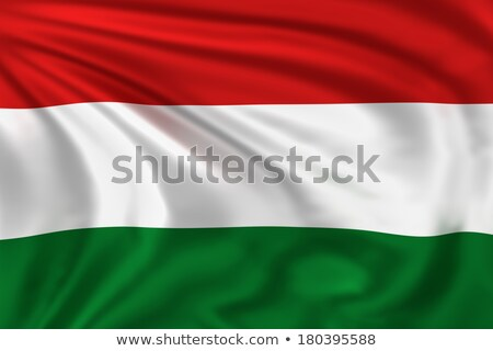 3D rendering of the national flag of Hungary waving in the wind Stock photo © butenkow