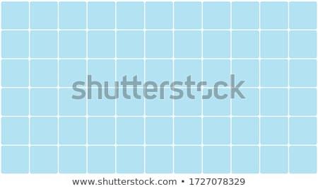 Mavi karo soyut vektör dijital beyaz Stok fotoğraf © christina_yakovl