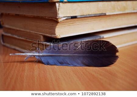 Livre stylo isolé blanche papier étudiant Photo stock © Borissos