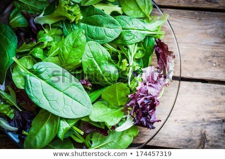 Fresh green mesclun salad close up Stock photo © calvste