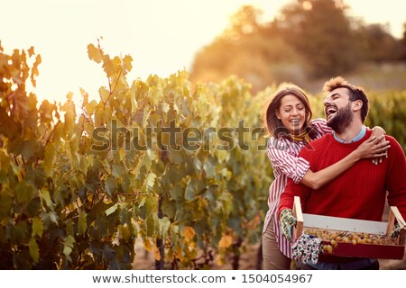 couple walking in between rows of vines stock photo © photography33