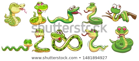 funny snake stock photo © dagadu