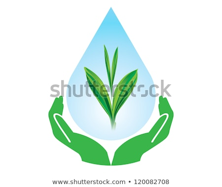 Drop of water with Tree inside and human hands stock photo © vlad_star