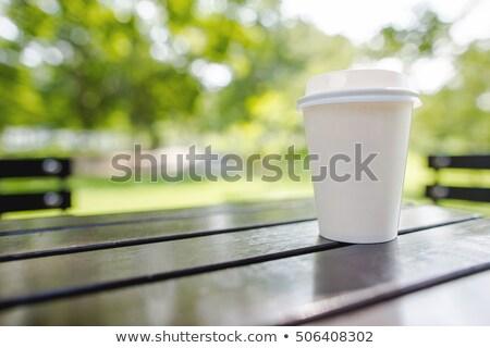 Tek kullanımlık fincan bitki çevre koruma Stok fotoğraf © devon