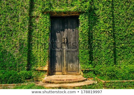 old door covered by foliage Stock photo © jakgree_inkliang