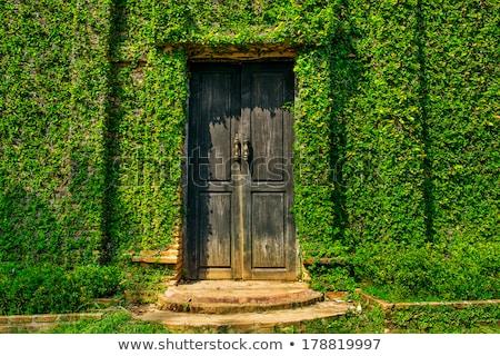 Eski kapı kapalı yeşillik Bina duvar Stok fotoğraf © jakgree_inkliang