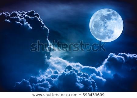 Blauw · maan · afbeelding · computer · gegenereerde · zee - stockfoto © Kirschner
