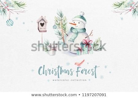 boneco · de · neve · cartão · vetor · temporadas · cartão - foto stock © malexandric