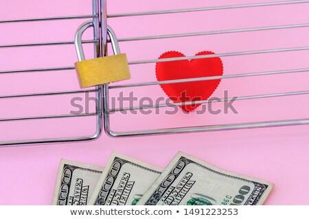 cadeado · poucos · notas · isolado · sucesso · segurança - foto stock © a2bb5s