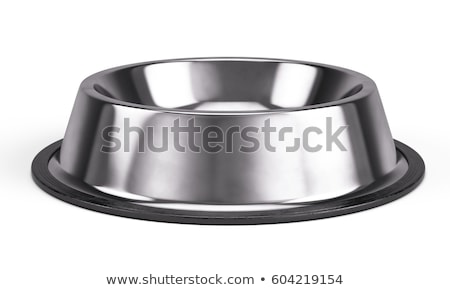 Stock photo: Metal Pet Bowl.