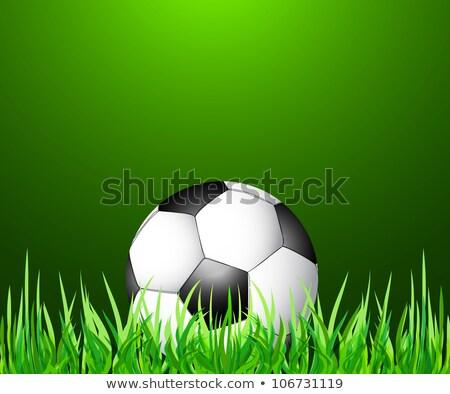Streszczenie zielona trawa piłka nożna wektora trawy piłka nożna Zdjęcia stock © bharat