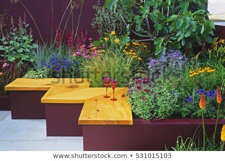 Клумба небольшой саду декоративный европейский Сток-фото © vavlt