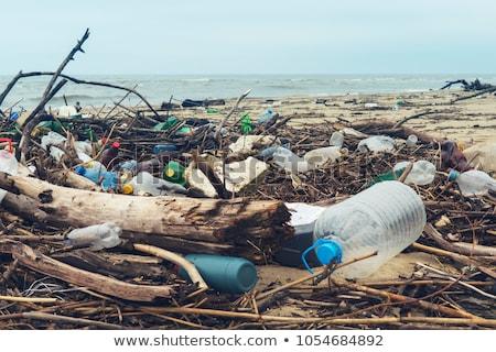 Inquinamento spiaggia acqua fiume plastica contenitore Foto d'archivio © leungchopan