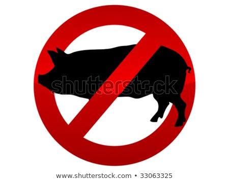 Nem sertés influenza gomb szavak szimbólum Stock fotó © iqoncept