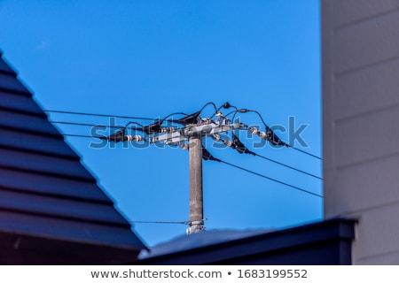 Moc słup dachu drutu Błękitne niebo domu Zdjęcia stock © elwynn