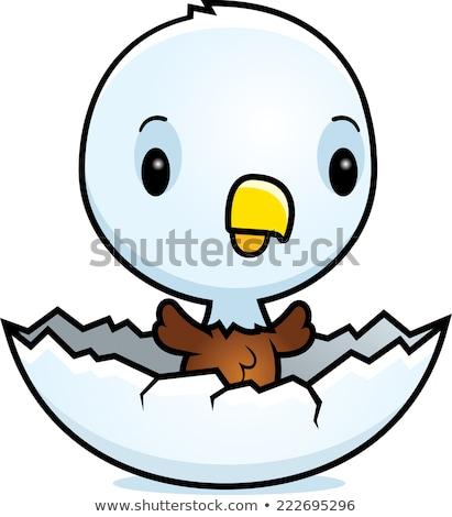 adelaar · cartoon · grappig · naar · Open · vleugels - stockfoto © derocz