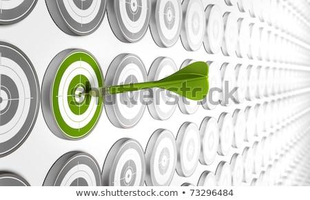 foco · produtividade · slogan · verde · alvo · três - foto stock © tashatuvango