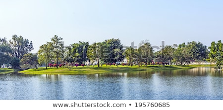 artificial Island in the park in the Summerpalace Bang Pa In Stock photo © meinzahn