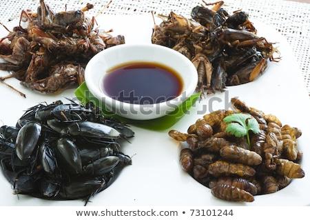 Foto stock: Exótico · comida · marrom · fresco · peixe · ciência