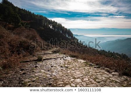 римской дороги Йоркшир трава лет области Сток-фото © chris2766