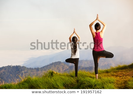 mother and daughter doing exercise outdoors stock photo © hasloo