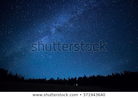 Noite estrela céu leitoso maneira árvore Foto stock © mahout