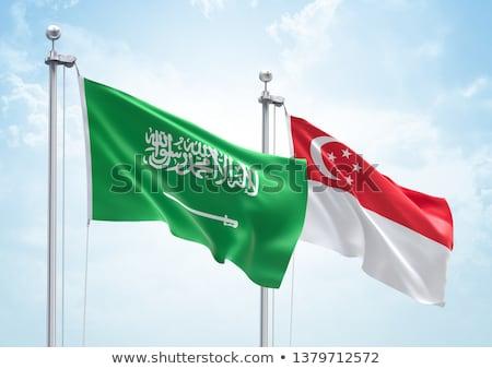 Arábia Saudita Cingapura bandeiras quebra-cabeça isolado branco Foto stock © Istanbul2009