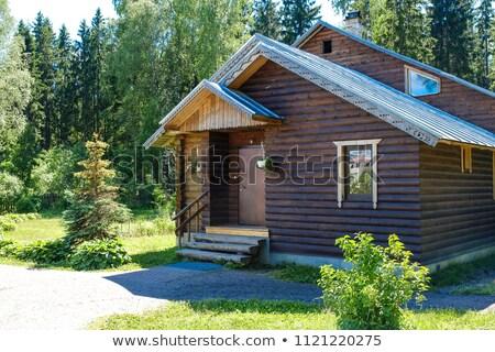 Domu trawy odizolowany biały budynku domu Zdjęcia stock © AptTone
