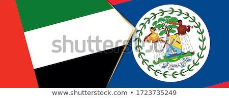 puzzle · zászló · Belize · izolált · fehér · 3d · illusztráció - stock fotó © istanbul2009