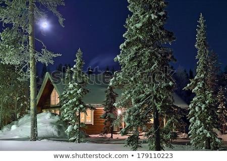 Stok fotoğraf: Wooden House In Winter Wood In Twilight