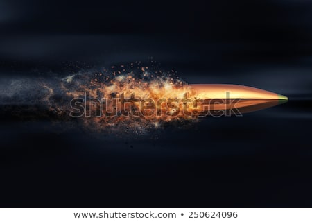 Ammunition for firearms Stock photo © bezikus