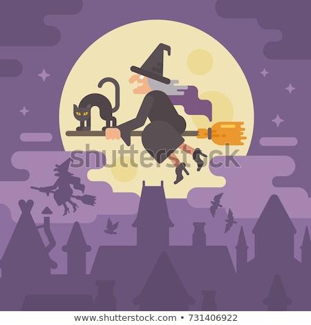 Halloween battenti strega ginestra scena luna Foto d'archivio © Morphart