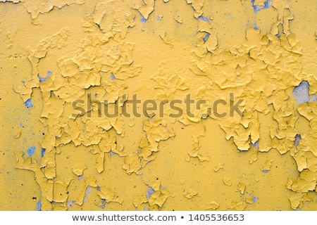 Old peel cement Stock photo © FOTOYOU
