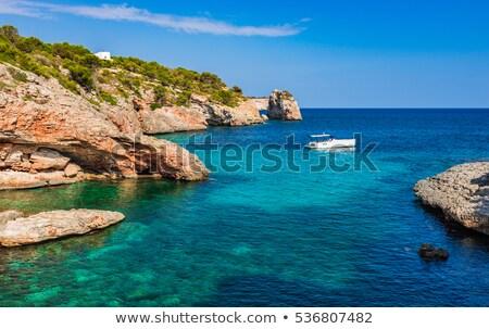 испанский · острове · побережье · Средиземное · море · морем · мнение - Сток-фото © Steffus