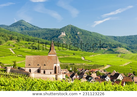 Stock photo: Hunawihr Alsace France