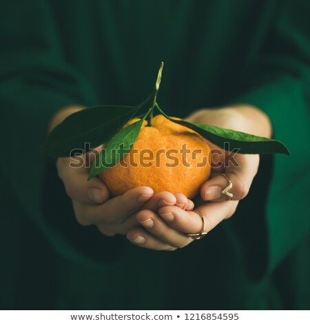 Cropped image of woman cleans the tangerine Stock photo © deandrobot