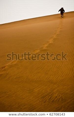 человека работает вверх песчаная дюна лес деревья Сток-фото © monkey_business