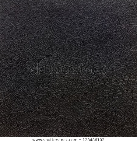 Decorative upholstery texture - seamless Stock photo © ExpressVectors