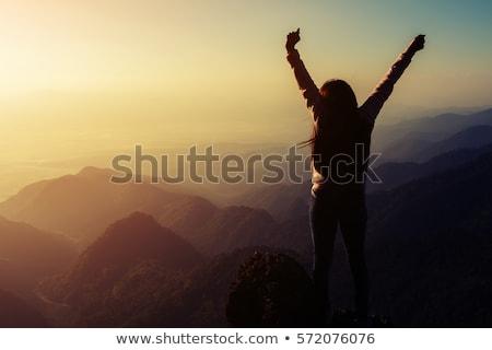 Rise Up Stock photo © psychoshadow
