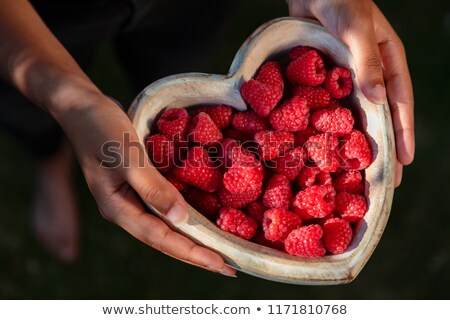 mulher · oferta · tigela · mirtilos · foco · mãos - foto stock © stevanovicigor