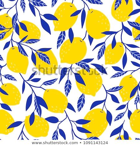 Citrom végtelen minta limonádé végtelen textúra gyümölcsök Stock fotó © lucia_fox
