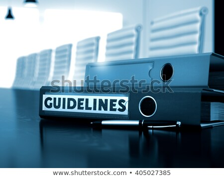 Guidelines on Office Binder. Toned Image. Stock photo © tashatuvango