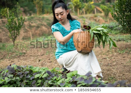 the  red-haired lady with vegetable in her hands Stock photo © balasoiu