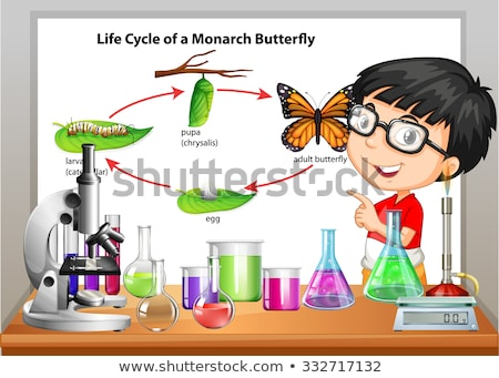 kid boy science butterfly life cycle stock photo © lenm