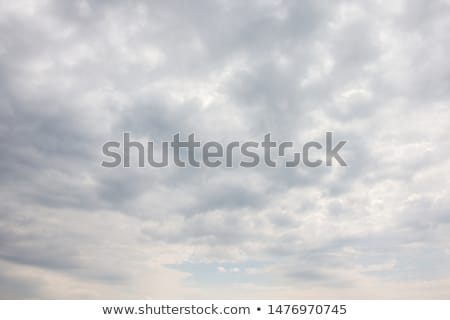 sky and gray clouds Stock photo © artjazz